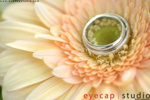 Wedding Day Photography Promotion Package 2013